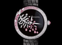 Chanel / by Leslie Venable