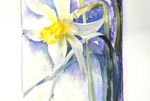 Watercolours / Gorgeous watercolour paintings.