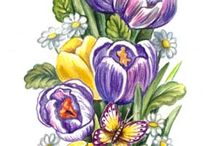 flaşa alınacak çiçekler