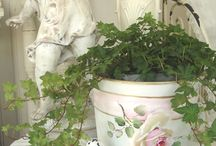 It's Shabby & Chic / Shabby Chic, Shabby French Decoration, Shabby Rustic decoration - all in its many shapes