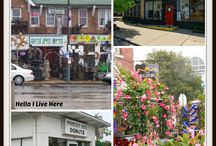 Small St Louis Businesses we visit