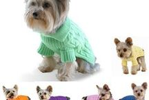 Sweater for dog