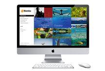 Web / Principais trabalhos como Webmaster e Designer