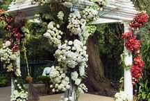 WEDDING | Decoration Altar
