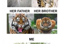 Funny memme whit animals