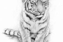 Tiger tatto