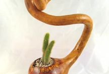 Gourd  Flowerpot , Ornamental