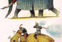 elephant ♡