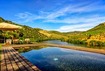 Douro Valley, Portugal / Spend your days in cool comfort as you idle down the magnificent Douro River.  Cruise in luxury from one prestigious winery to the next - sampling their wares.. The views alone make a visit to the Douro area well worth the trip. | TRIPWIX