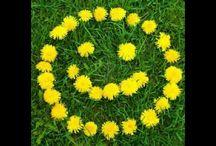 flowers ★