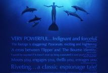The fight for freedom ~ Whales and Dolphins / by Carina Sadie