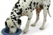 Pets Deserve to be Pampered 2014 reviews