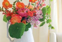Flowers......lovers / flowers, boequets,florists,arrangment....