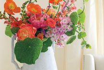 Flowers......lovers / flowers, boequets,florists,arrangment....