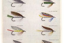 Fly collections