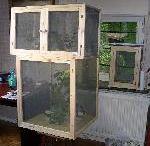 terrarium - elevage
