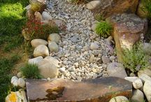 outdoors - landscaping