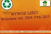Wywóz liści Wrocław, tel 504 746 203, wywożenie liści, grabienie, sprzątanie liści, / Wywóz liści Wrocław, tel 504 746 203, wywożenie liści, grabienie, sprzątanie liści, porządkowanie ogrodu, sprzątanie terenu, wywóz śmieci, zbędnych rzeczy z altany, wywóz odpadów zielonych z ogrodu, działki, uporządkowanie działki. http://www.omegaplus.home.pl/wywozlisciwroclaw/