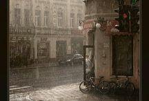 Tardes lluviosas