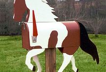 Skye's horse stuff