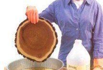 γνώσεις περί ξύλου