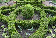 Garden design / Landscaping