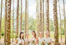 wedding likes for me / by Candie Chatham