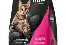 Nulo Cat