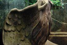 Baa's angels