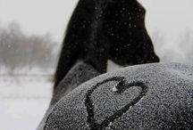 filling snow