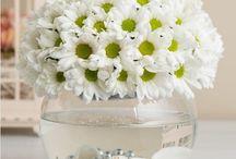 Beykoz-Çiçekçi / Beykoz Çiçekçi, Beykoz Çiçek Gönder, Beykoz Çiçekçilik, Beykoz Çiçek Siparişi, Beykoz Çiçek, Sipariş Tel: 0216 384 7038, Beykoz'a çiçek göndermek istiyorsanız web sitemizi tıklayın..