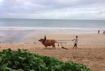 Best Resort in Bali