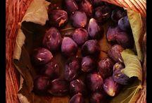 Púrpura. Colors Costa Brava / Morado, berengena, purple, auvergine. Colors Costa Brava