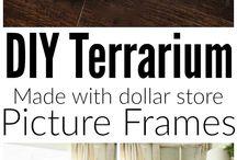 Frame terrarium