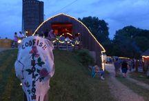 Midwest Festies