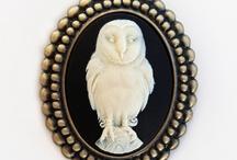 Hoot Hoot: Owls! / by Marisol O. Preciado