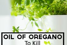 ways to use oregano oil