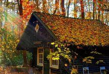 Hidden Homes