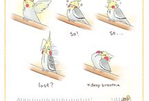 попугайчики)))