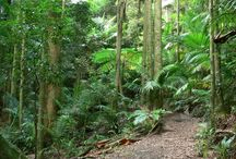 Great Bushwalking / Great places for Bushwalking