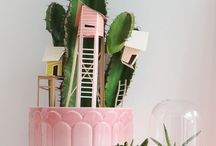 Cactus Love / by The Coveteur