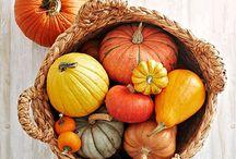 Ideen für die Auslese - Deko Herbst