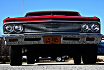 Muscle car babies / by Pat Hoyt