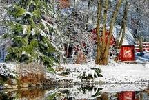 Winter my favorite