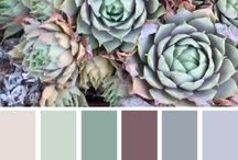 S/S 16 Colour Palletes