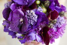 Bouquet orchidée violette