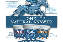 Immun-Ocean Ad for Throughbred Business Guide / Horse supplements for performance horses Healthy horses