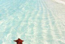 Bahamas bliss