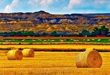 Great Plains States, US / by Linda Rowan