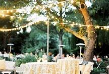 La Tavola Linens / La Tavola Fine LInens Weddings & Event Rentals linens